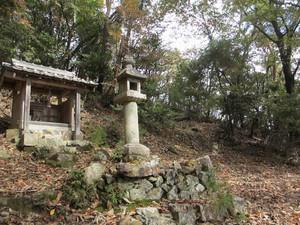Hakusimaatago_500x375