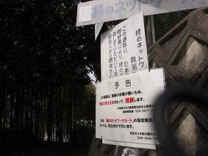 Kouji2_500x375